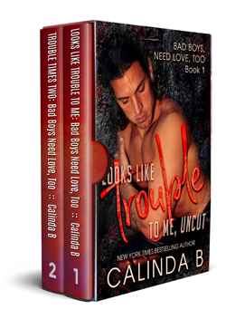 Bad Boys Need Love, too, books 1 and 2